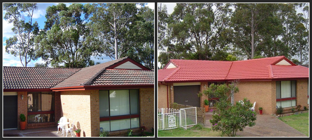 Expert Roof Restoration Cleaning And Painting Services